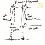 Heart Murmurs Intro